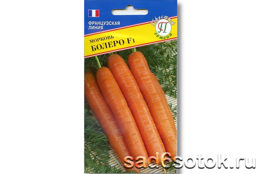 Морковь сорт Болеро F1