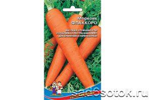Морковь сорт Флаккоро