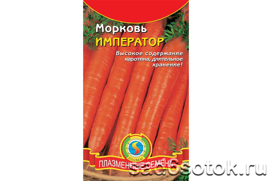 Морковь сорт Император