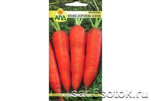 Морковь сорт Королева осени