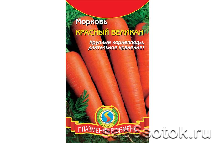 Морковь сорт Красный великан