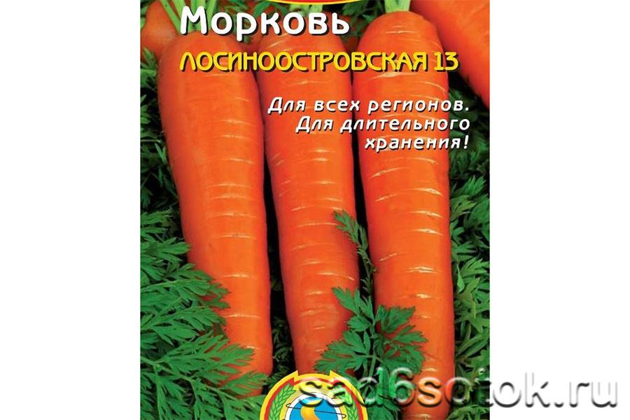 Морковь сорт Лосиноостровская