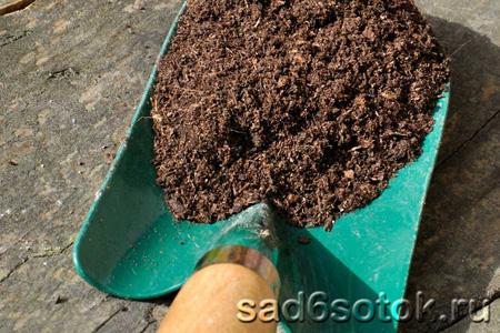 Почва – борьба с бактериями в почве, улучшение почвы