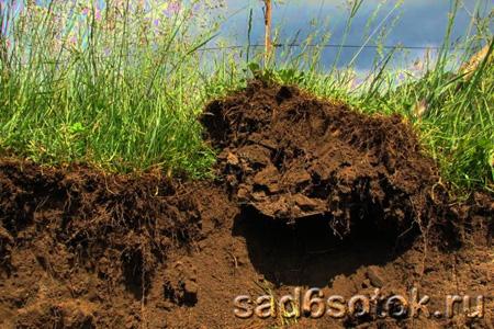 От чего устает почва