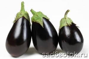 Самые урожайные сорта баклажанов