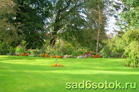 Садовая почва для газона