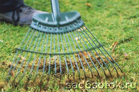 Прочесывание газона