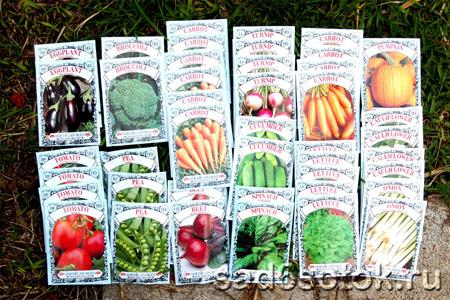 Семена в интернет-магазинах