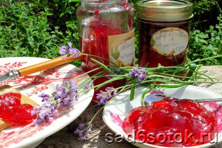 Желе из ягод, вареное и сырое