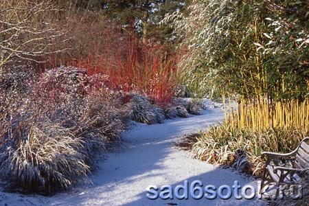Как украсить сад зимой