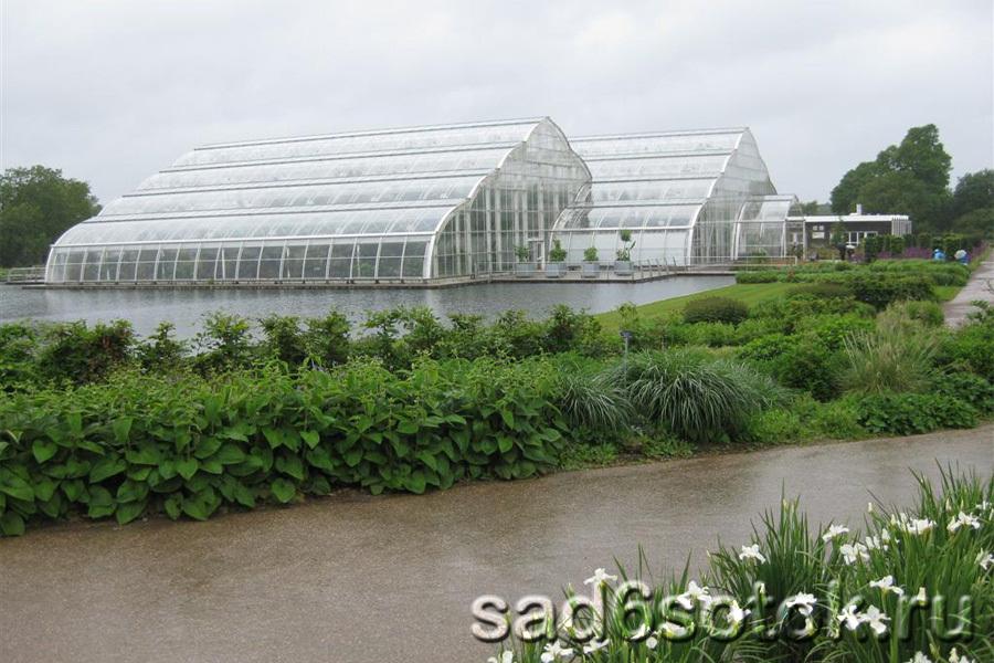 Теплицы и лаборатории ботанического сада