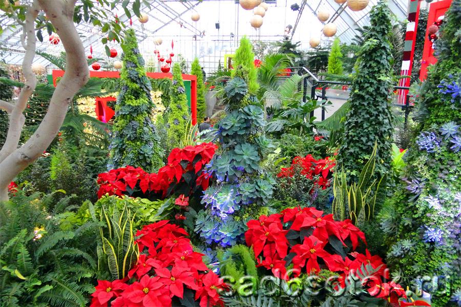 «Новый год в саду» (Noël au jardin)