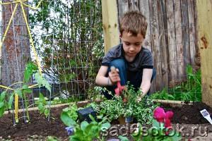 Чем занять детей летом?